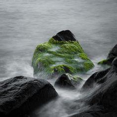 Plankton by Stefan Bleihauer, via Behance