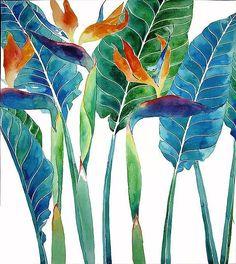 Gabby Malpas a.k.a. Mango Frooty   Strelizia   Watercolor #watercolorarts