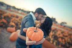 Pumpkin Patch Engagement Photo Shoot Fall Wedding Idea