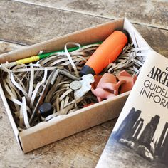 Archaeology Kit | Archaeology Exploration Kit | Children's Archaeology Kit
