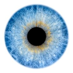 Windows to the Soul - Iris gallery by Fine Art Photographer Edouard Janssens. Iris Drawing, Eye Texture, Eye Expressions, Eyes Artwork, Realistic Eye Drawing, Human Photography, Blue Background Images, Fotografia Macro, Photos Of Eyes