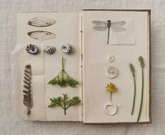 an unwritten book page 11 by wild goose chase, via Flickr
