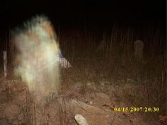 Real Ghost Pictures: The Manifestation in the Enon Grove Cemetery