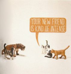 Your new friend is kind of intense