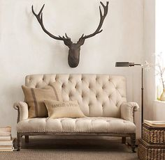 Deer head and couch