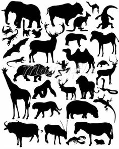 Various animal silhouettes More