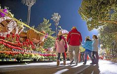 5 Rose Parade tips to get the most out of your time in Pasadena