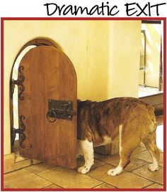 if all pet doors were this cute they would come standard on all new houses! - Tap the pin for the most adorable pawtastic fur baby apparel! You'll love the dog clothes and cat clothes! Animals And Pets, Cute Animals, Pet Door, Doggy Doors, Dog Rooms, Custom Home Designs, Dog Houses, Dog Design, Dog Friends