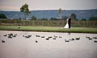 Beautiful lake Perth Wedding Venues, Beautiful Wedding Venues, Style, Swag, Outfits