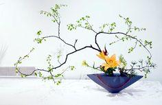 Zen of Japanese Flower Arragnement: Ikebana « Seekyt