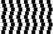 Another famous illusion, this one was recently rediscovered in a cafe wall at the bottom of St. Michael's Hill. Although the lines appear to be diverging from one another they are in fact quite parallel.