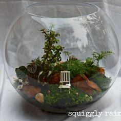 Huge Terrarium Style Miniature Garden by Squiggly Rainbow