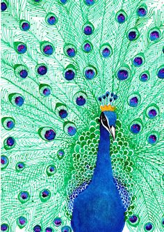 peacock linocut - Google Search