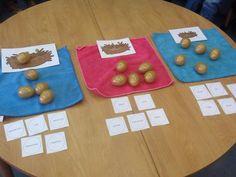 Kleuters verdelen woorden in klankgroepen en leggen het juiste ei in het nest
