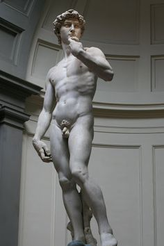 Summer of 2008 in Florence, Italy. 'David' by Michelangelo, 1501-04, height 17.0 ft, marble. at L'Accademia, Florence, Italy. This is beautiful because Michelangelo was a great sculptor even more than a painter. Even though his paintings were more famous he still considered himself more of an artist. David was his most famous sculpted work or art.