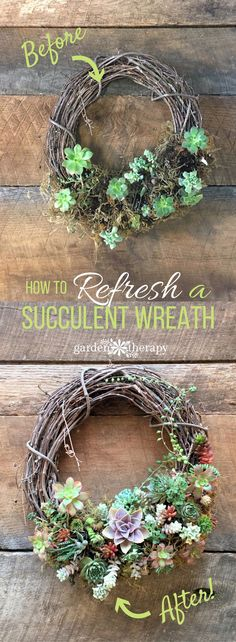 Refresh a succulent wreath with these tips.