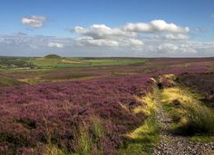 The North Yorkshire Moors ©  Colin Grice