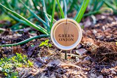 Mason Jar Lid Plant Label - Don't toss your canning jar lids anymore! Turn them into plant labels for next year's garden. The lids are a great way to upcycle yo…