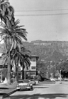 Had palm trees and street lamps like this on our street. Even the Hollywood sign was there!