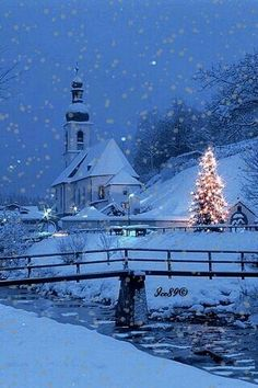 Beautiful winter scene