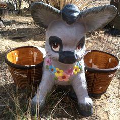 Donkey planter at KooKoo's