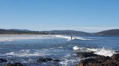 Tasmania, Memories, River, Island, Mountains, Park, Beach, Nature, Outdoor