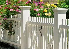 Picket Fence Gate, Vinyl Picket Fence, White Vinyl Fence, White Picket Fence, White Fence, Vinyl Fencing, Black Fence, Vinyl Gates, Green Fence