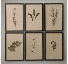Framed pressed flowers on linen