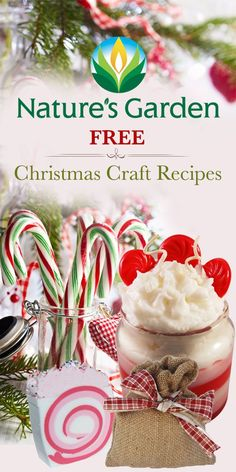 Free Christmas craft recipes from Natures Garden. Make your own homemade Christmas gifts for your friends and family using our free Christmas recipes. Christmas Activities, Christmas Crafts For Kids, Christmas Projects, All Things Christmas, Holiday Crafts, Christmas Holidays, Winter Holiday, Holiday Ideas, Christmas Decorations