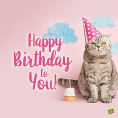 - Happy birthday greetings Catlady Killmouskie  IMAGES, GIF, ANIMATED GIF, WALLPAPER, STICKER FOR WHATSAPP & FACEBOOK