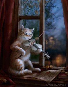 En la ventana... tocando violín