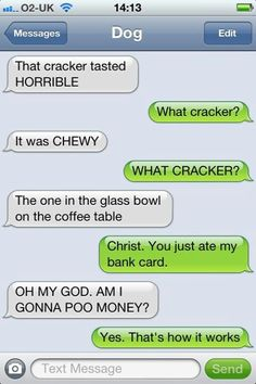 Texts from dog texts юмор Funny Dog Texts, Funny Text Memes, Text Jokes, Funny Texts Crush, Funny Text Messages, Funny Dogs, Funny Quotes, Hilarious Texts, Stupid Texts