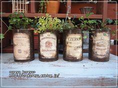 Vintage Tins, Vintage Crafts, Succulent Arrangements, Planting Succulents, Garden Junk, Garden Art, Succulent Gifts, Succulent Planters, Tin Can Crafts