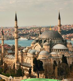 Cruise to Istanbul to See Where Asia and Europe Meet in Harmony : Suleiman Mosque, Istanbul, Turkey Cruise Travel, Travel Tours, Travel Guide, Best Places To Travel, Places To Go, Travel Around The World, Around The Worlds, Turkey Destinations, Beautiful Mosques