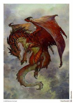 Amo dragões!