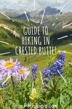 101 Best Crested Butte hiking images