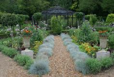 edge with furry grasses potager garden path
