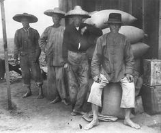 Chinese field hands in Los Angeles, 1898.