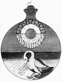 J. C. Barchusen, Sequenza simbolica da 'De Alchimia vel crysopoeia' (in 'Elementa Chemiae', 1718), Parte seconda (Tavole 26-50)…