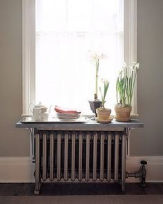 exPress-o: Home Inspiration: Radiator Shelf (+plants) Old Radiators, Bathroom Radiators, Radiator Shelf, Radiator Cover, Radiator Ideas, Diy Design, Interior Design, Living Room Windows, Plant Shelves