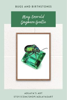 This May birthstone art print features a highly realistic beetle drawing perched on top of a beautiful green emerald! Drawn in exquisite detail in coloured pencil, this emerald art print is available in my Etsy shop for digital download, for the perfect May birthday gift! To order your very own birthstone art print, visit etsy.com/shop/adlayasart May Beetle | Gemstone Wall Art | Emerald Drawing Gem May Birthday, Birthday Gifts, Gift For Lover, Gifts For Mom, Printing Services, Online Printing, Beetle Drawing, Color Calibration, Printing Process