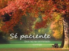 Sé paciente, Dios no ha terminado contigo. Sigue adelante, no desfallezcas, se fuerte. I Love You God, God Is Good, Life Is Good, Gods Love Quotes, Quotes About God, Healing Words, Gods Plan, Religious Quotes, Bible Verses Quotes