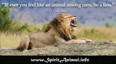 Inspirational Lion Quotes Do I believe in arbitration? But not in arbitration between the lion and the lamb, in which the lamb is in the morning found inside the Lion Spirit Animal, Your Spirit Animal, Inspirational Lion Quotes, Between The Lions, Dusk, How Are You Feeling, Totems, Lamb, Animals