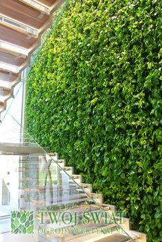 Ogrody wertykalne, zielone ściany, florafelt, ogród wertykalny