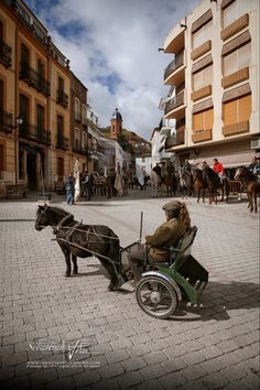"""The old meeting Once a year, in """"charity day"""" (""""Caridad""""), the muleteers stand in the main town square, waiting for the members of the """"mayordomía"""", or custodians of the virgin painting, for a dancing exhibit before the mess. Santisteban del Puerto (Jaén province, Andalusia), Spain."""