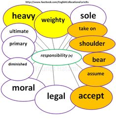 Some collocations with the word 'responsibility'.