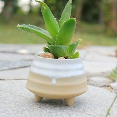 HP0024 Jingdezhen Pottery Ceramic Flower Pots Succulents Small .