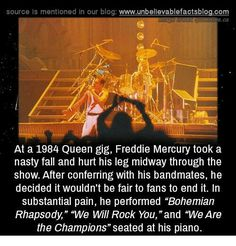 freddie mercury quotes At a 1984 Queen gig, Freddie Mercury took a nasty fall and hurt his leg midway through the show. After conferring with his bandmaies, he decided it wouldnt Freddie Mercury Quotes, Queen Freddie Mercury, Galileo Galileo, Queen Facts, Queen Meme, We Will Rock You, Somebody To Love, Queen Band, Its A Mans World
