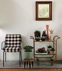Casa - Decoração - Reciclados: Espalhe Flores e Plantinhas e Deixe sua Casa Mais Linda!