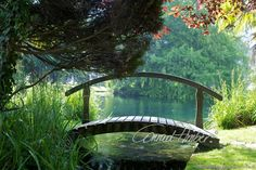 Motive finden - Conrad Amber Garden Bridge, Outdoor Structures, Woodland Forest, Landscape, Nature